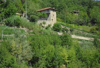 Foto ALTRO 8 Piemonte CN Rocchetta Belbo