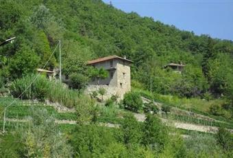 Foto ALTRO 10 Piemonte CN Rocchetta Belbo