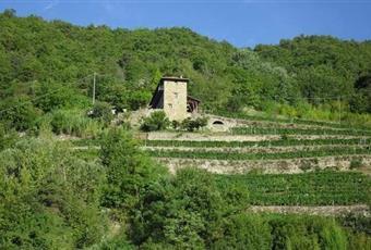 Foto ALTRO 11 Piemonte CN Rocchetta Belbo