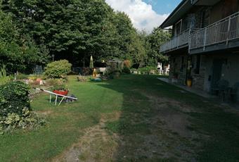 Il giardino è con erba Piemonte TO Corio