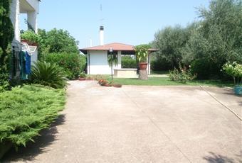 Vista esterna della villa; gazebo; scorci del giardino Puglia BA Corato