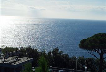 Foto ALTRO 9 Liguria SV Varazze