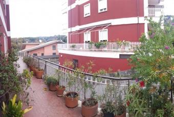 Foto TERRAZZO 8 Lazio RM Lanuvio