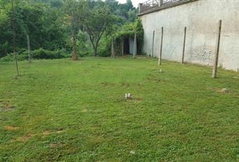 Il giardino è con erba Toscana MS Aulla