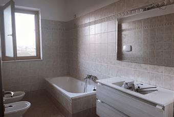 Il bagno è luminoso, il pavimento è piastrellato Abruzzo TE Sant'Omero