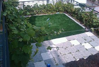 Il giardino è con erba Abruzzo TE Tortoreto
