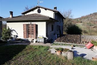 Il giardino è con erba Lombardia PV Ponte Nizza