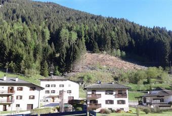 Il giardino è con erba Trentino-Alto Adige TN Bedollo