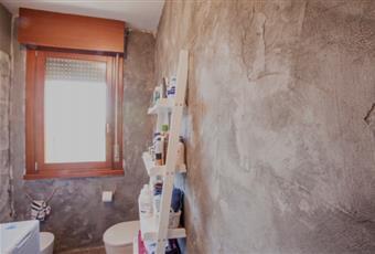 Anche il bagno è molto luminoso, i sanitari sono stati sostituiti nel 2018 (water, bidet, doccia) Veneto VE Fossò
