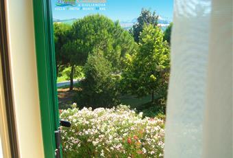 Il pavimento è piastrellato, la camera è luminosa Abruzzo TE Giulianova