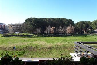 Foto ALTRO 7 Lazio RM Roma