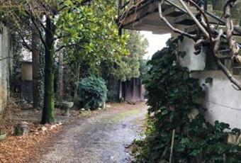 Foto ALTRO 8 Veneto PD Piove di sacco