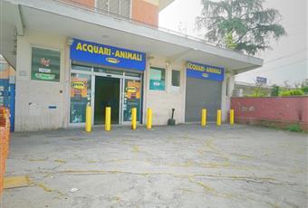 Foto ALTRO 8 Lazio RM Roma