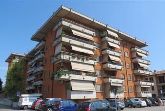 Foto ALTRO 8 Lombardia CR Cremona