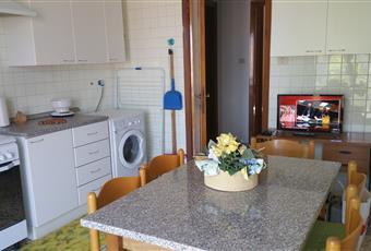Affitto 3 stanze singole in appartamento