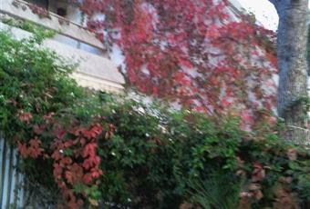 Foto ALTRO 13 Puglia TA Pulsano