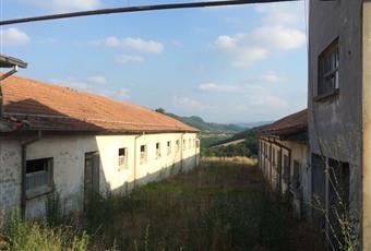 Foto ALTRO 5 Emilia-Romagna PR Lesignano De' bagni