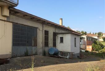 Foto ALTRO 4 Emilia-Romagna PR Lesignano De' bagni