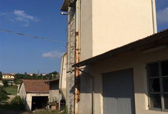 Foto ALTRO 3 Emilia-Romagna PR Lesignano De' bagni