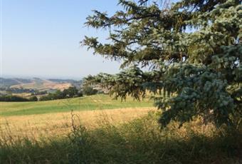 Foto ALTRO 9 Emilia-Romagna PR Lesignano De' bagni