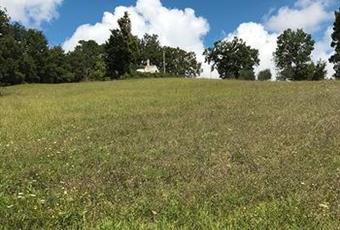 Il giardino è con erba Campania AV Vallata