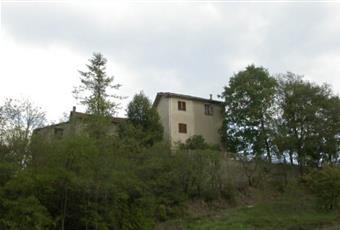 Foto ALTRO 2 Piemonte AL Spigno Monferrato