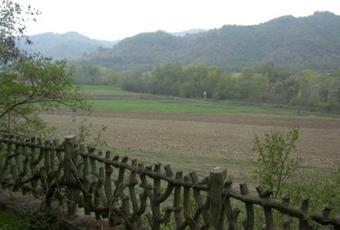 Foto ALTRO 4 Piemonte AL Spigno Monferrato