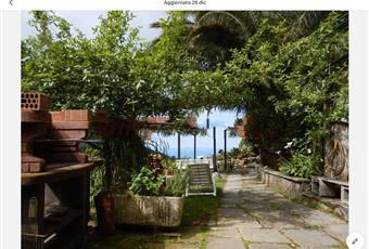 Foto ALTRO 10 Liguria SP Riomaggiore