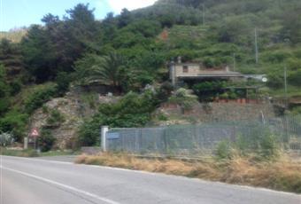 Foto ALTRO 9 Liguria SP Riomaggiore