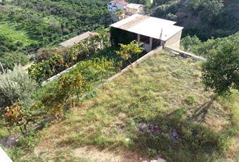 Foto GIARDINO 10 Calabria RC Reggio di Calabria