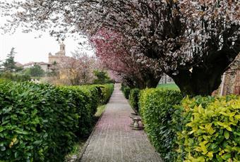 Foto GIARDINO 11 Piemonte AT Penango
