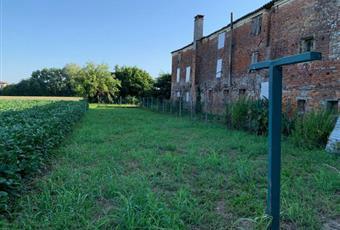 Il giardino è con erba Veneto PD Trebaseleghe