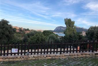 Foto ALTRO 8 Sardegna OT Golfo Aranci