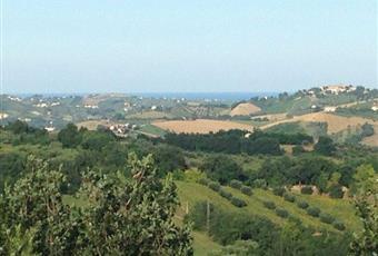 Foto ALTRO 14 Abruzzo TE Sant'Omero