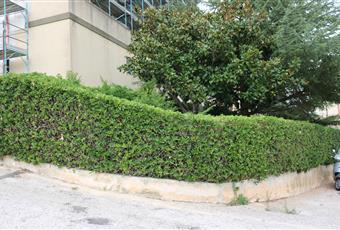 Il giardino è con erba Sicilia RG Ragusa