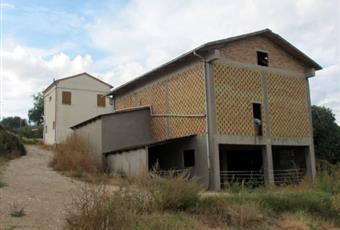 Foto ALTRO 3 Emilia-Romagna RN Montescudo