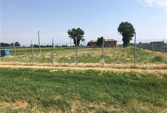 Il giardino è con erba Emilia-Romagna BO Calderara di Reno