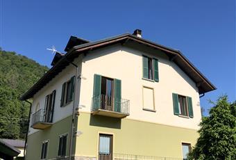 Foto ALTRO 24 Piemonte VB Bee