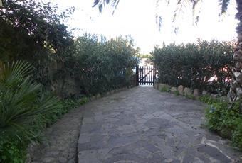 Foto GIARDINO 3 Sardegna OT Olbia
