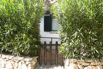 Foto ALTRO 20 Sardegna OT Olbia