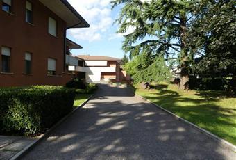 Foto ALTRO 11 Friuli-Venezia Giulia GO Gorizia