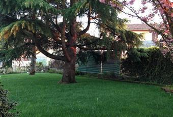 Vista della villa dall'esterno e parte dell'interno arredato, il giardino è con erba Piemonte AL Coniolo