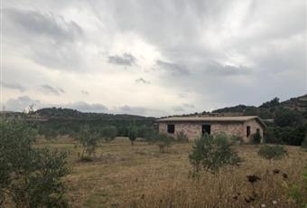 Foto ALTRO 2 Sardegna OG Tortolì