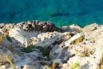 3000 mq di giardino con flora mediterranea e fiori da cui si accede direttamente alla discesa al mare privata con piazzole prendi sole. Sicilia SR Siracusa