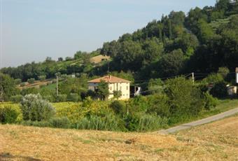 Il giardino è con erba Marche FM Montegiorgio