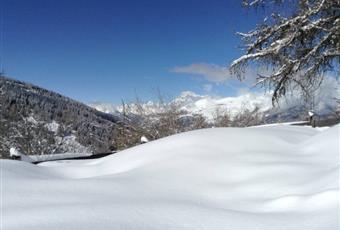 Foto ALTRO 2 Valle d'Aosta AO Gressan