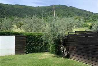 Foto GIARDINO 17 Toscana PO Carmignano