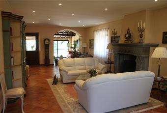 Il pavimento è di parquet, il pavimento è piastrellato, il salone è con camino, luminoso Umbria TR Castel Viscardo