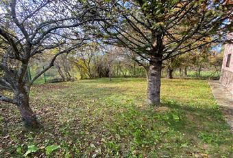 Il giardino è con erba Piemonte AL Cantalupo ligure