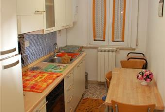 La cucina è luminosa Emilia-Romagna FE Ferrara
